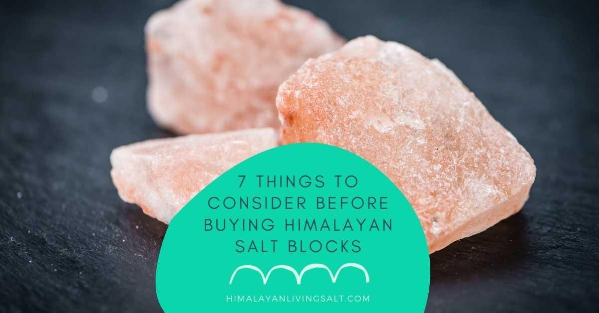 7 Things To Consider Before Buying Himalayan Salt Blocks