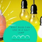 What Bulb Can I Use In A Salt Lamp